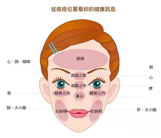 修复肌肤的深层组织结构