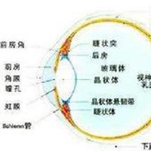 北京德胜门中医院眼科-专业诊疗